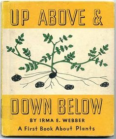 Up Above & Down Below by Irma E. Weber, 1943