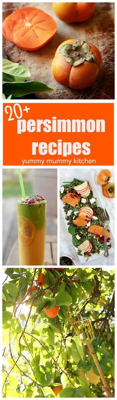 Over 20 Persimmon Recipes. How to eat persimmons. Persimmon Pudding, Persimmon Recipes, Fruit Recipes, Vegan Recipes, Cooking Recipes, How To Eat Persimmon, Veggie Bullet, Caesar Pasta Salads, Yummy Mummy
