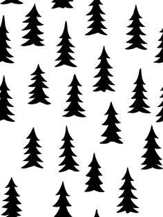Spruce - White - Wall Mural & Photo Wallpaper - Photowall