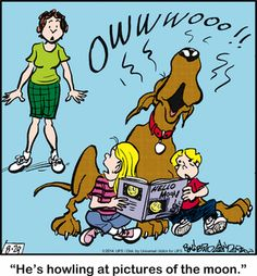 Today on Marmaduke - Comics by Brad Anderson Animal Pics, Animal Quotes, Funny Animal Pictures, Funny Animals, Dog Cartoons, Cartoon Dog, Funny Dog Jokes, Funny Dogs, Tumblr Cartoon