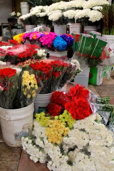 153 Best La Flower District Images Flowers Summer Cupcakes Cashmere