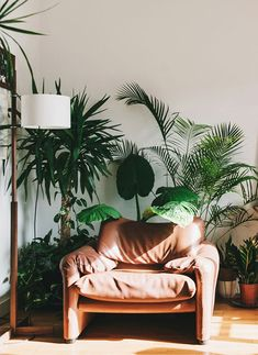 retro vibes | vintage leather chair | green plants and leather chair in barcelona home as seen on sfgirlbybay