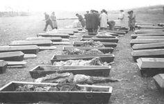 Spain - 1936-39. - GC - Paracuellos, la mayor fosa común de la Guerra Civil | La Gaceta