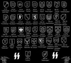 The SS has a lot of wings. But if you are saying units, I think you mean the Waffen SS units, the armed wing of the SS. Ww2 Uniforms, German Uniforms, Luftwaffe, Military Paint, Modern World History, Nazi Propaganda, Prinz Eugen, Camouflage Colors, Military Insignia