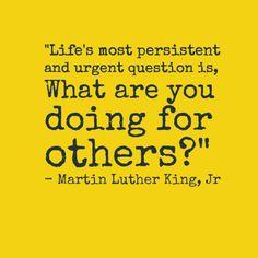 MLK quote Wisdom Quotes  http://dsdomination.com/sp/pro?aid=Netta Soubai