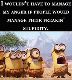 I wouldn't have to manage my anger if people would manage their freakin' stupidity. Funny Minion Memes, Minions Quotes, Funny Thoughts, Good Thoughts, Haha So True, Minion Pictures, Minions Love, Stupid People, Twisted Humor