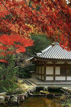 Chinkokuji Temple, Japan