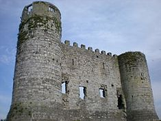 Carlow Castle is located next to the River Barrow in County Carlow, Ireland. It was built between 1207 and 1213, and is a National Monument of Ireland.