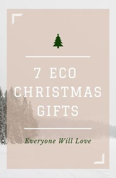 The Ultimate Christmas Wish List for the Eco-Minded Home | eBay Guides