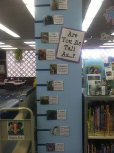 Library Displays, Classroom Displays, Primary School Displays, Classroom Setup, Elementary Library, Elementary Schools, Middle School Libraries, Reggio Emilia, Maths Display