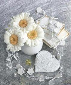 Sunflowers And Daisies, White Flowers, Beautiful Flowers, Daisy Love, Love Images, Gerbera, Something Beautiful, Pet Birds, Color Splash