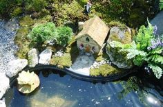 Google Image Result for http://www.miniature-gardens.com/images/fairy-pond-1.jpg