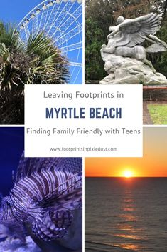 Leaving Footprints in Myrtle Beach: Finding Family-Friendly With Teens Beach Vacation Tips, Family Vacation Destinations, Beach Trip, Vacation Trips, Travel Destinations, Family Vacations, Vacation Spots, Vacation Ideas, Places To See