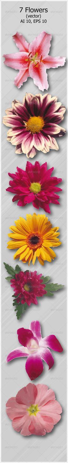 7 Flowers