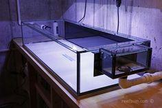 Coast To Coast Custom Aquariums Frag Tank