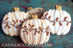 Fall pumpkins   Cookie Connection