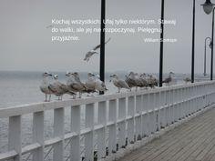 #kochaj, #ufaj, #lifefactory