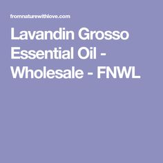 Lavandin Grosso Essential Oil - Wholesale - FNWL