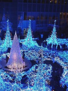 Christmas trees in Caretta-Shiodome, Tokyo, Japan #ChristmasLights