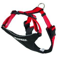 Harnais NEEWA Running Harness pour chien  24,99€