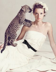 I would like a leopard kitten at my wedding please.  Mmmk thanks.