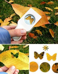 DIY Leaf Confetti from Handmade Charlotte using paper punches Creative Crafts, Diy And Crafts, Crafts For Kids, Arts And Crafts, Leaf Crafts, Summer Crafts, Autumn Crafts, Nature Crafts, Idee Diy
