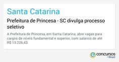 Prefeitura de Princesa - SC divulga processo seletivo - https://anoticiadodia.com/prefeitura-de-princesa-sc-divulga-processo-seletivo/