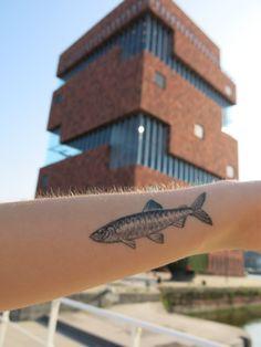 my sardine tattoo