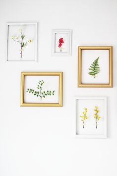 Botanicals (tutorial)