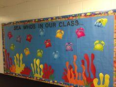 My beach theme classroom: bulletin board