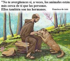 (Francisco de Asís)