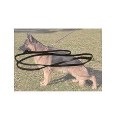 Correa de exposición para perros con mosquetón