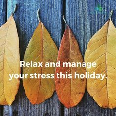 Dont let anything ruffle your feathers this #Thanksgiving. Whether it is the #travel #family or #cooking-- here are some way to re-center yourself this #holiday courtesy of  @mindbodygreen (link in bio)  #turkey #meditation #body #peace #calm #breathe #relax #focus #friends #wednesday #thursday #living #wellness #wellbeing #lifestyle #learn #yoga #awareness #november #georgia #atlanta #alpharetta #marietta