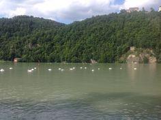 Camping Kaiserhof. Aschach an der Donau, Østrig. Dejlig lille, intim og hyggelig campingplads lige ned til Donau. Fine faciliteter og fint Gasthaus. Fra Aschach kører man ca 5 km helt nede langs Donau på en vej der er så smal at to biler ikke kan passere hinanden undtaget på et par vigepladser. Ret spændende og anderledes.