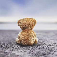 Thank God for your teddy bear that I still have. When my need to hold you tight overwhelms me, I squeeze Teddy instead. Tatty Teddy, My Teddy Bear, Cute Teddy Bears, Cute Bear, Animation, Bear Doll, Miss You, I Miss Her, Native American Indians