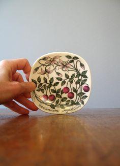 Arabia Finland Botanica Plate Esteri Tomula Vaccinium by luola Floral Theme, Plate Design, Vintage Pottery, Ceramic Artists, Plates On Wall, Scandinavian Style, Ceramic Pottery, Finland, Decorative Plates