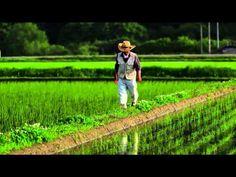▶ Vertikale Bauernhöfe - FUTURE - ARTE - YouTube