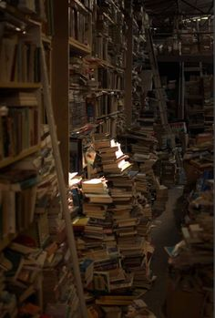 It would be so thrilling to climb up in a dusty, nearly forgotten attic and find piles and piles of old books. Then you search for the 'perfect' book. Once you find it you take a seat on one of the book piles. Then your journey begins as you open the old musty pages. Start your own adventure today. All you have to do is open up a book...