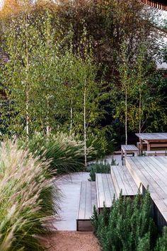 Olive Garden, Lush Garden, Dream Garden, Natural Garden, Garden Planters, Cottage Garden Design, Garden Landscape Design, House Landscape, Cottage Gardens