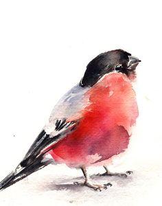 Bullfinch Watercolor Painting Art Print, Bird Art, Watercolour Art, Wall Art