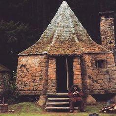 Rubius Hagrid at his hut Mundo Harry Potter, Harry Potter Universal, Harry Potter Movies, Harry Potter World, Slytherin Aesthetic, Harry Potter Aesthetic, Draco Malfoy, Hagrids Hut, Potters House