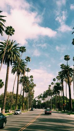 68 Ideas Travel Background Iphone Photography Palm Trees For 2019 Tumblr Wallpaper, Tree Wallpaper, Nature Wallpaper, Phone Backgrounds, Wallpaper Backgrounds, Desktop Wallpapers, Photo Usa, Beautiful Places, Beautiful Pictures