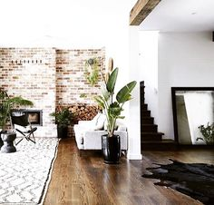 10 cool hipster kitchens | Home-Kitchen | Pinterest | Hipster ...