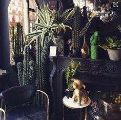 The best ways to bring the outside into your home, from dark and moody interiors, cacti and houseplants to tropical prints and more.