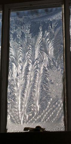 frost on a window: