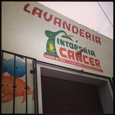 Drop off laundry: Lavendaria Cancer (astrology) Drop Off Laundry, Cancer Astrology, Neon Signs, Instagram, Oaxaca