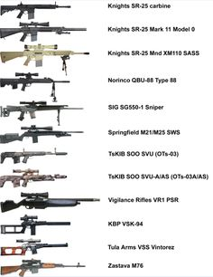 Visual list of sniper rifles.  Which would you pick? Do I really have to choose? ALL of them.Loading that magazine is a pain! Get your Magazine speedloader today! http://www.amazon.com/shops/raeind