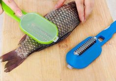 Commercial Heavy Duty Reversible Fish Scaler Stainless Steel Scale Remover