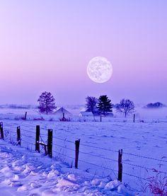 . Winter Szenen, I Love Winter, Winter Time, Winter Moon, Winter Night, Hello Winter, Winter Sunset, Winter Christmas, Beautiful Moon