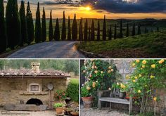 Country Living in Tuscany